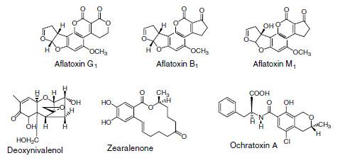 mykotoxins